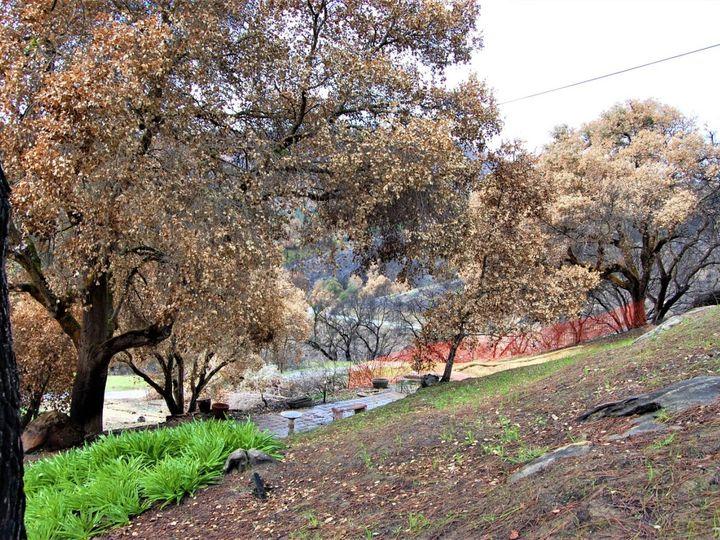 17463 Via Cielo Carmel Valley CA. Photo 12 of 24