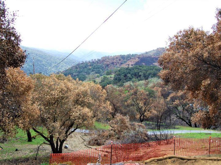 17463 Via Cielo Carmel Valley CA. Photo 15 of 24