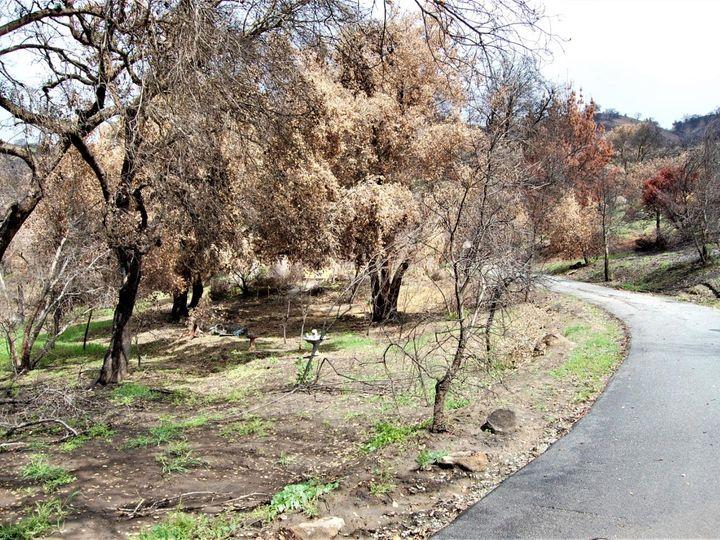 17463 Via Cielo Carmel Valley CA. Photo 22 of 24