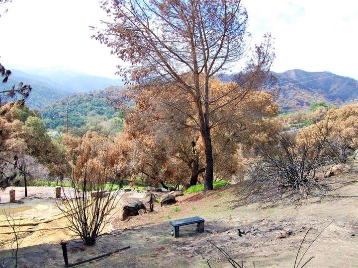 17463 Via Cielo Carmel Valley CA. Photo 10 of 24