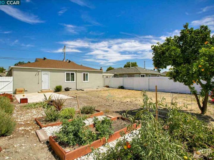 2317 Vegas Ave Castro Valley CA Home. Photo 28 of 31
