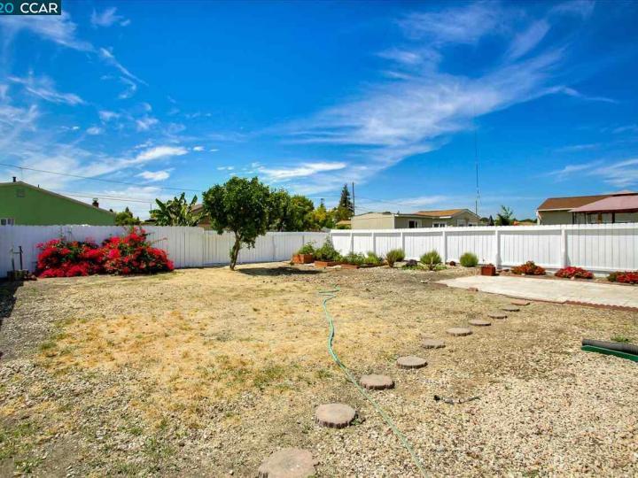 2317 Vegas Ave Castro Valley CA Home. Photo 30 of 31