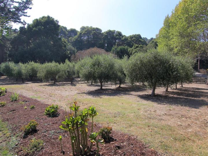 2481 Old San Jose Rd Soquel CA Home. Photo 6 of 33