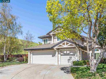 259 Laurelglen Ct, Shadow Creek, CA