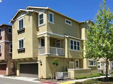 3001 Moss Landing Ter, Irvington Area, CA