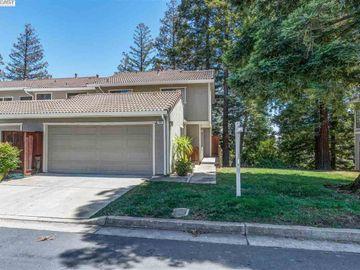 334 Via Cordova Ln, Mission Pines, CA