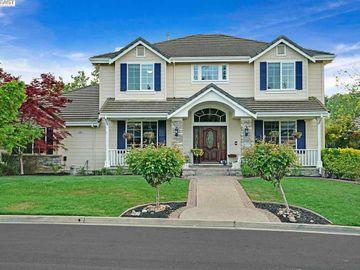 335 Brianne Ct Pleasanton CA Home. Photo 2 of 40