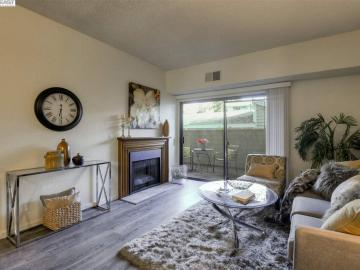 3395 Pinewood Ter unit #103, Meadowbrook, CA