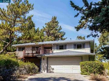 3693 De Rosa Ct, St. Frances Park, CA