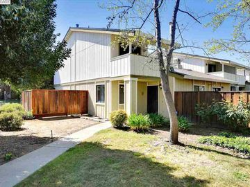 598 Morgan Cmn, Peppertree, CA