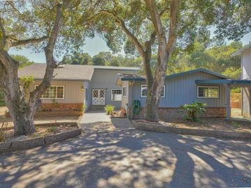 7176 Valle Pacifico Rd, Prunedale, CA
