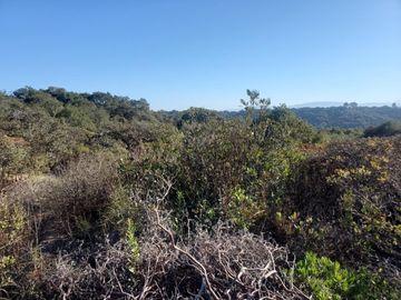 Mallory Canyon Rd, Prunedale, CA